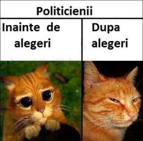 politicienii-inainte-si-dupa-alegeri