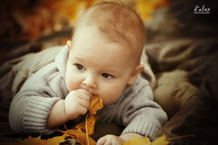 copil mancand frunze educatie dragoste neconditionata