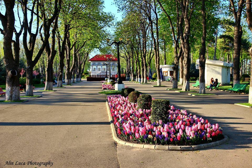 Parcul copou Vaslui