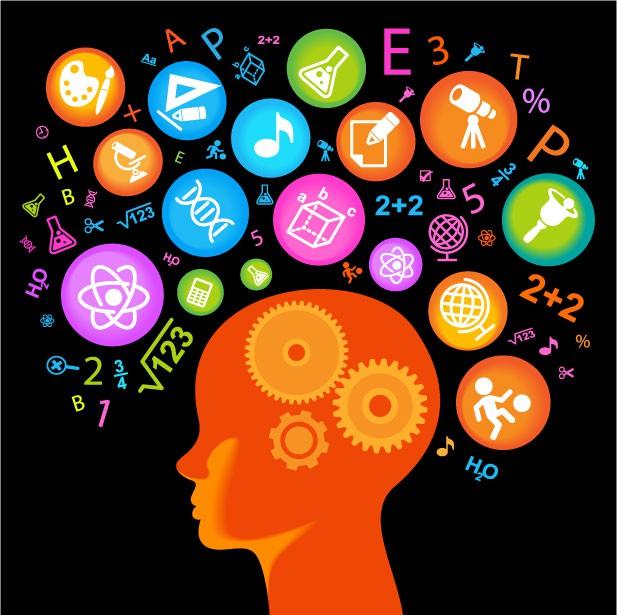 childs-brain1